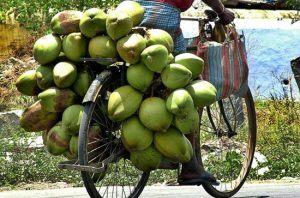 green-coconut